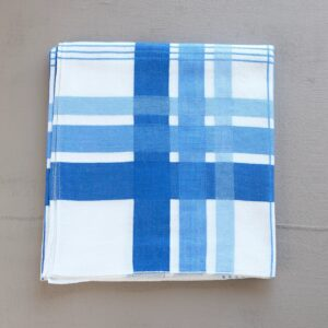 Blue and white checked tablecloth